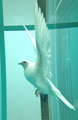 Damien-Hirst-Incomplete-Truth